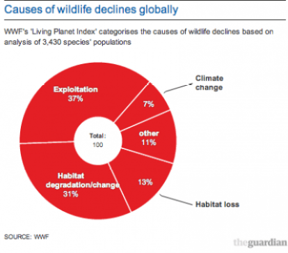 Causes of Wildlife decline globally