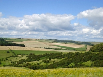 Alexander Temerko has reassured green campaigners he has no plans to dig up the South Downs