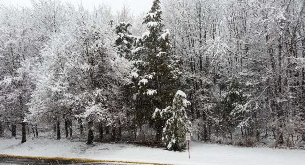 The view from our place on the first day of spring!