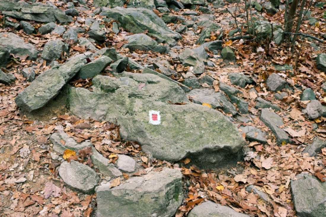 A red dot a long the trail, these were just about everywhere you looked.