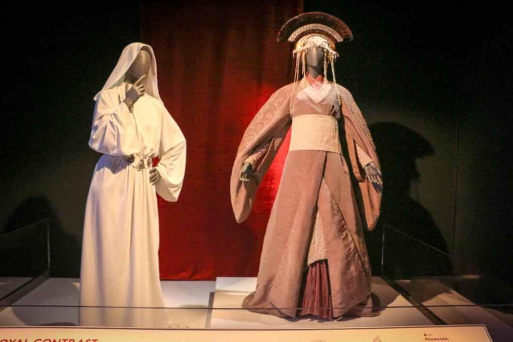 Princess Leia & Padme Costumes