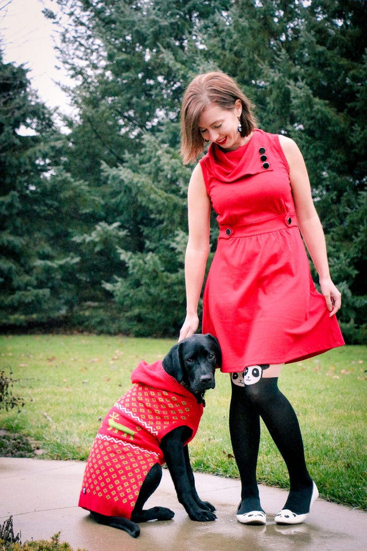Dog Christmas sweater