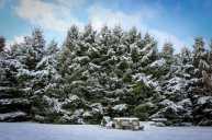 Wisconsin winter wonderland