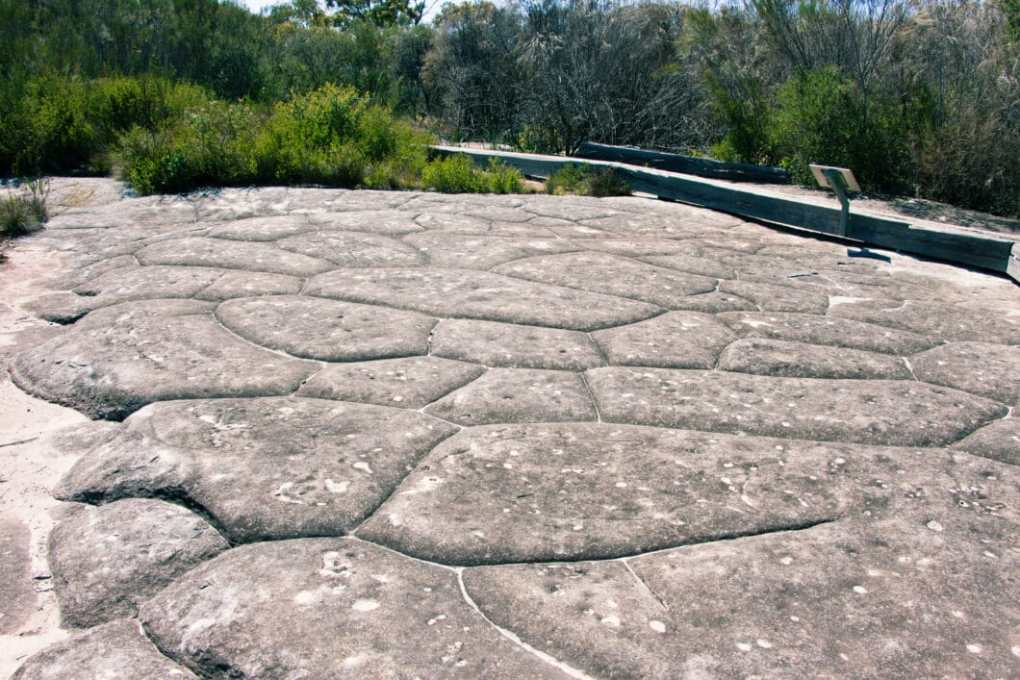 Aboriginal Heritage Walk in Ku-ring-gai Chase National Park.