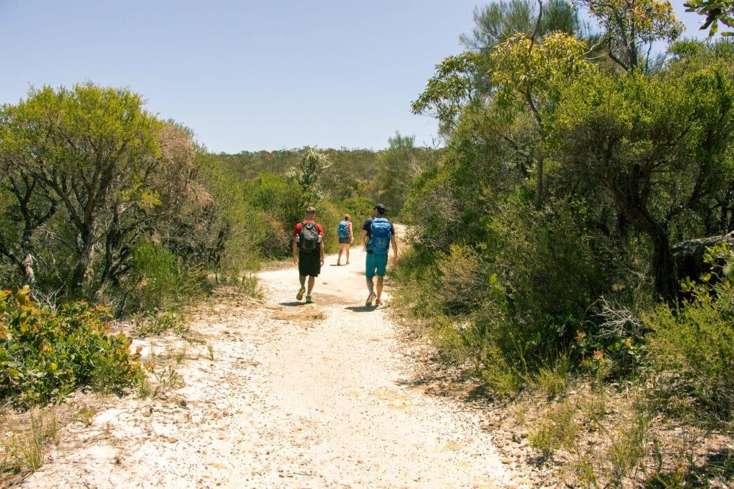 Bushwalks Outside of Sydney - Ku-ring-gai Chase National Park & The Blue Mountains