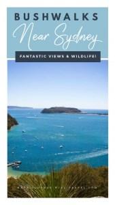 Bushwalks Outside of Sydney – Ku-ring-gai Chase National Park & The Blue Mountains