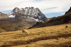 Rainbow Mountain Trek Peru