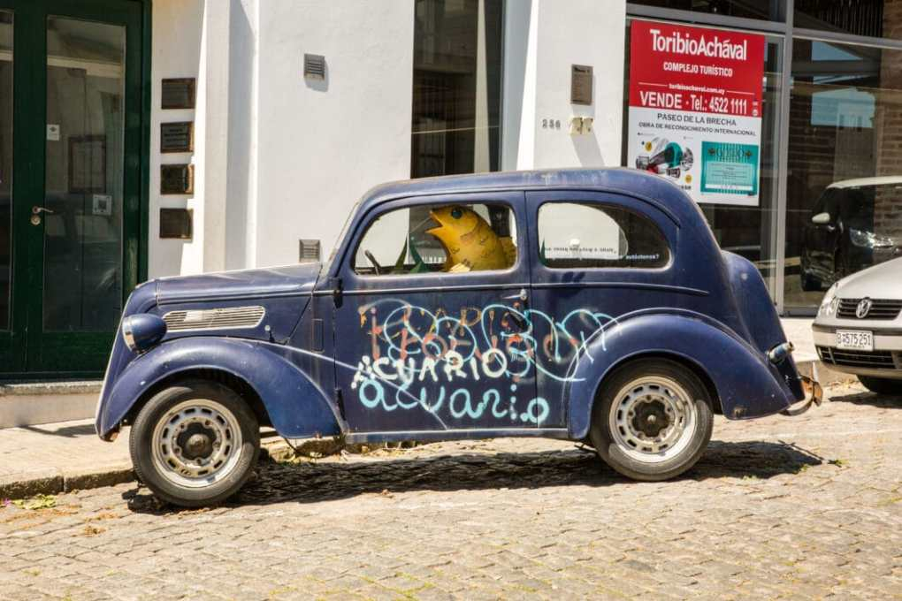 Fish driving a car in Colonia del Sacremento