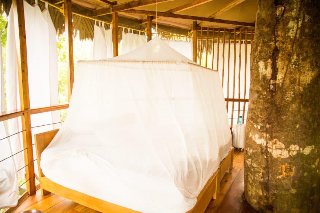 inside treehouse 10