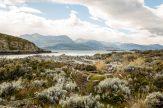 Bridges Island, Ushuaia