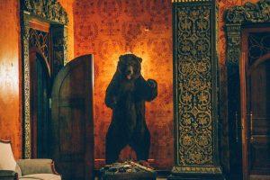 the bear in the boyarsky