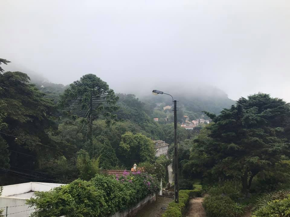 Sintra, Portugal foggy funny travel photo