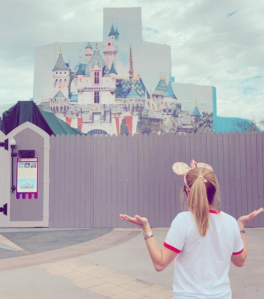 "Disneyland Magic Kingdom Cinderella Castle under construction funny ""reality"" travel photos"