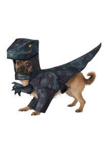 dog-pupasaurus-rex-costume