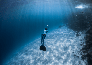Go Freediving at the Caicos Barrier Reef Wall