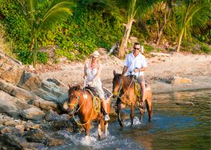 Try Horseback Riding on the Beach