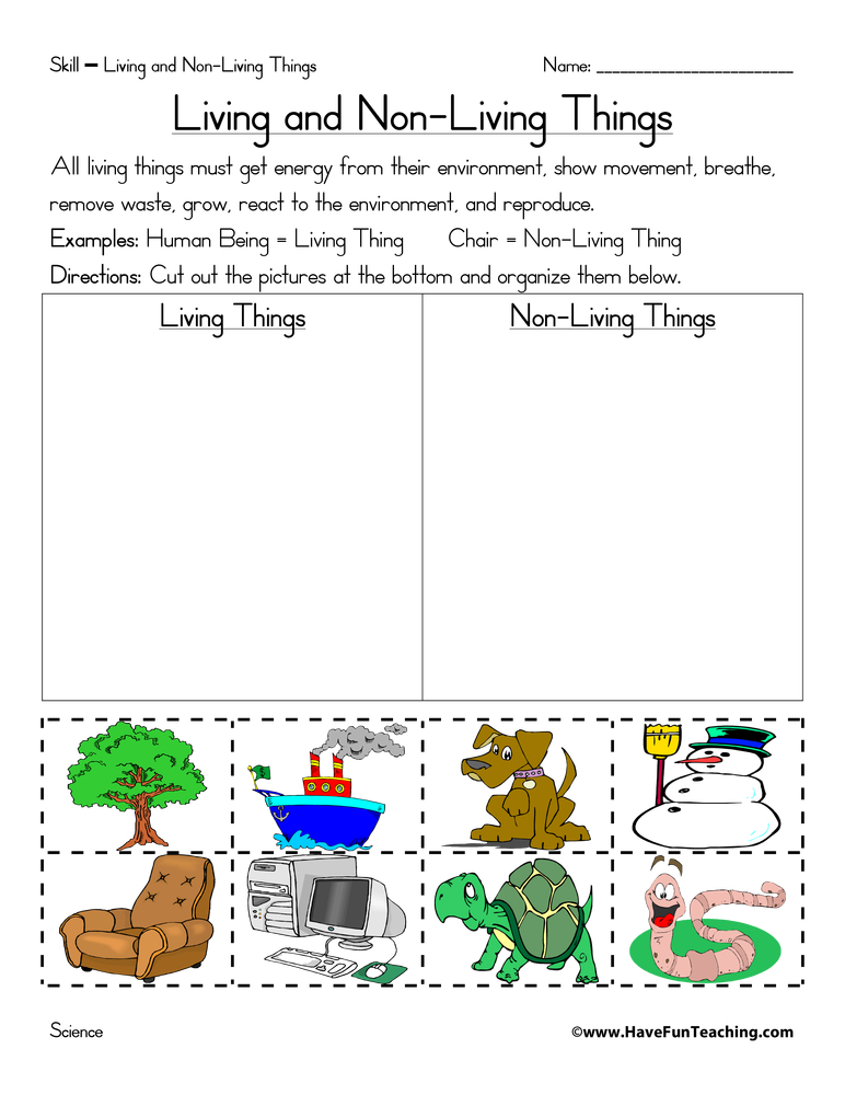 Living and Nonliving Things Worksheet