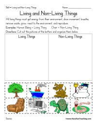 Living and Nonliving Things Worksheet | Have Fun Teaching