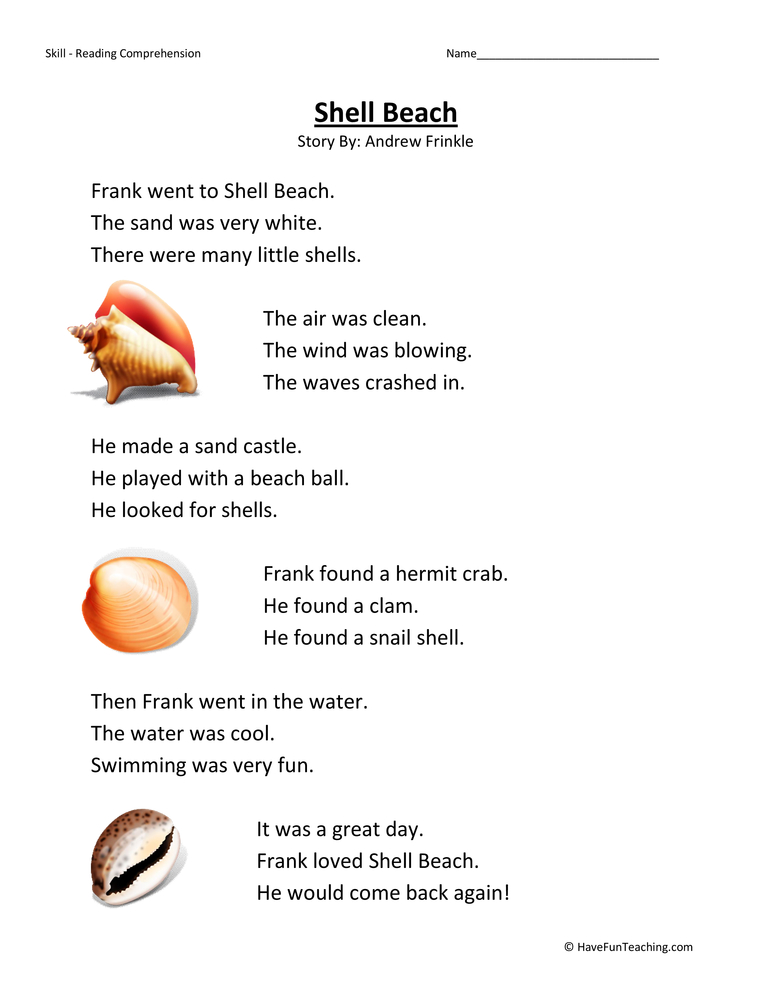Shell Beach Reading Comprehension Worksheet
