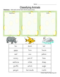 Classifying Animals Worksheet