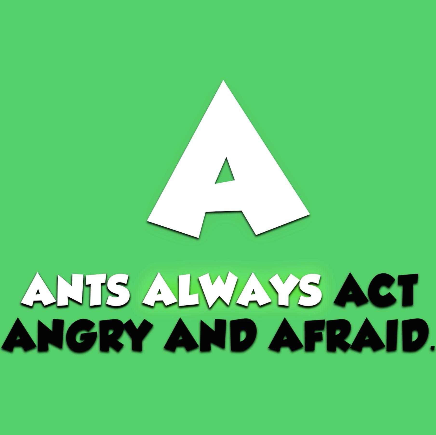Alphabet Animals Video Download