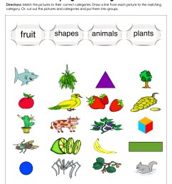 Grouping into Categories Worksheet • Have Fun Teaching [ 1294 x 1000 Pixel ]
