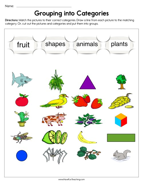 small resolution of Grouping into Categories Worksheet • Have Fun Teaching