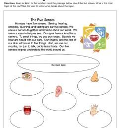 Using Your Five Senses Worksheet • Have Fun Teaching [ 1294 x 1000 Pixel ]