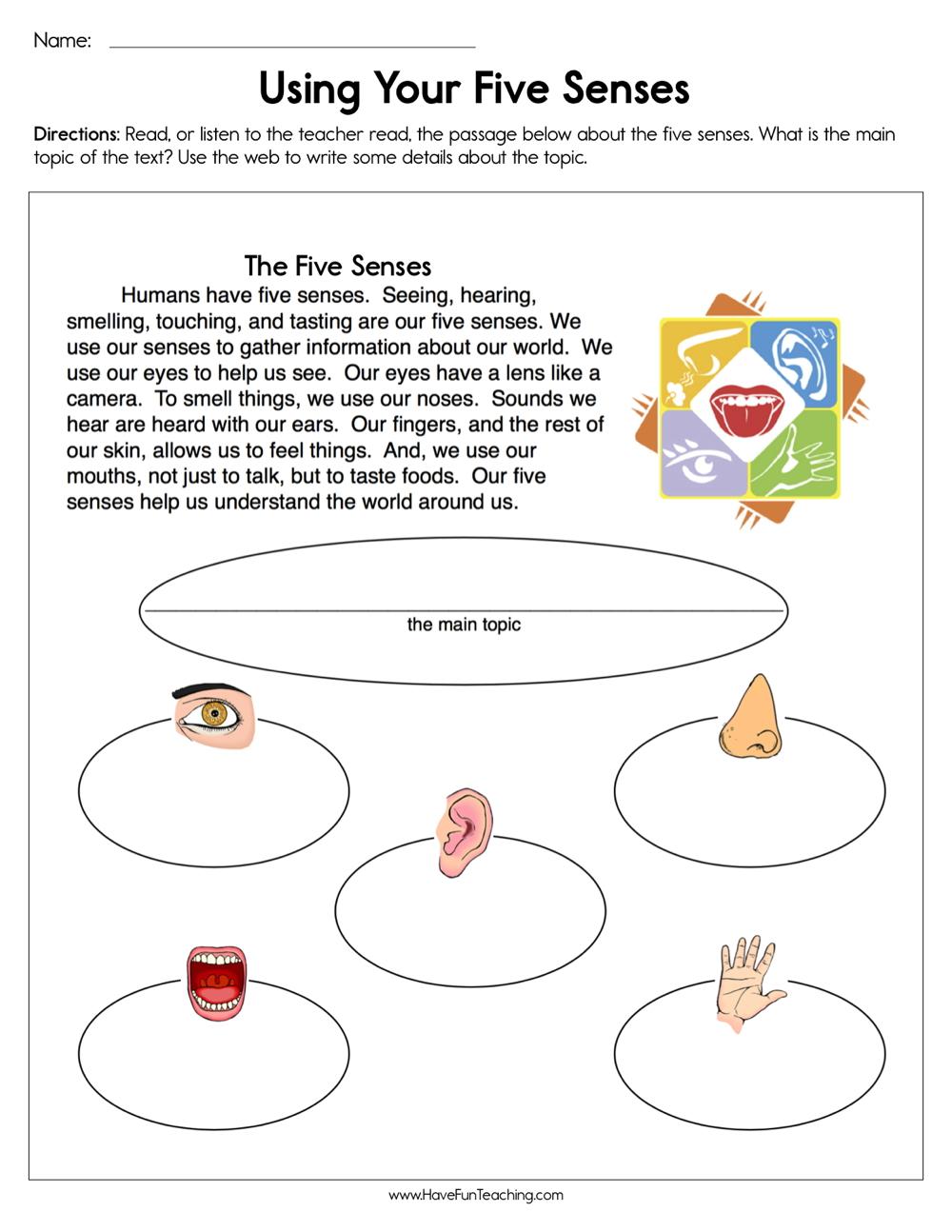 medium resolution of Using Your Five Senses Worksheet • Have Fun Teaching