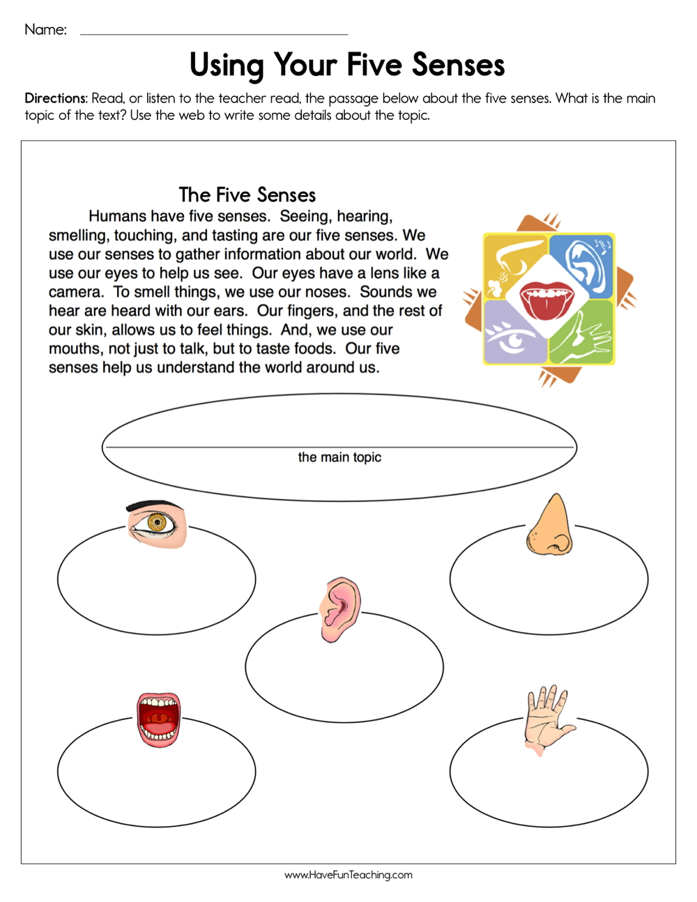 hight resolution of Using Your Five Senses Worksheet • Have Fun Teaching