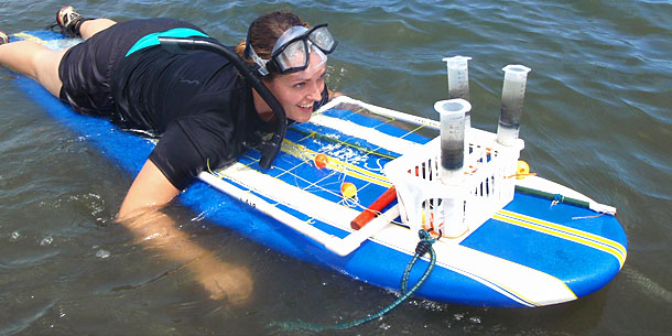 UH Leads Newest NSF Ocean Education Center