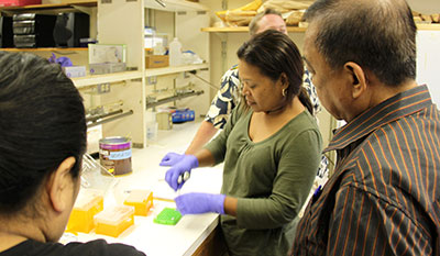 People conducting an experiment in a lab