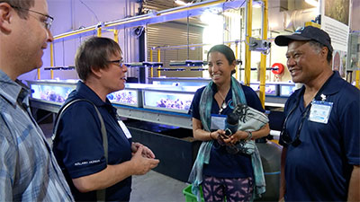 Hokulea crew and UH researchers explore Great Barrier Reef ...