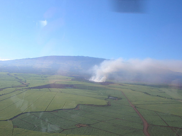 Cane field burning on Mau