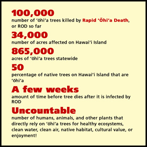 Fact sheet about Rapid Ohia Death