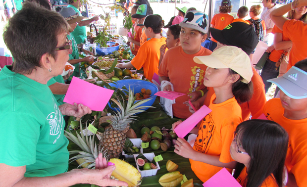 Fruits, Bees, Pigs And More At Agriculture And Environmental Awareness Day