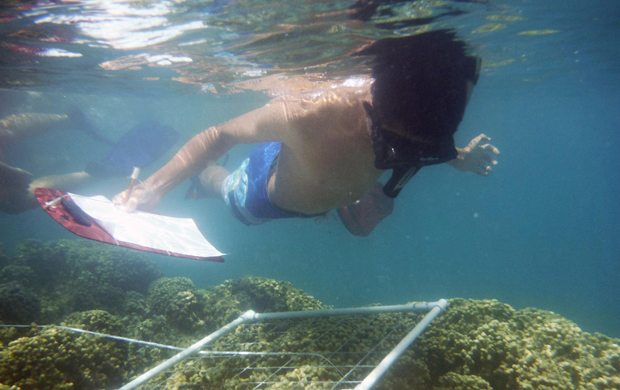 Students survey the reef in Kaneohe Bay