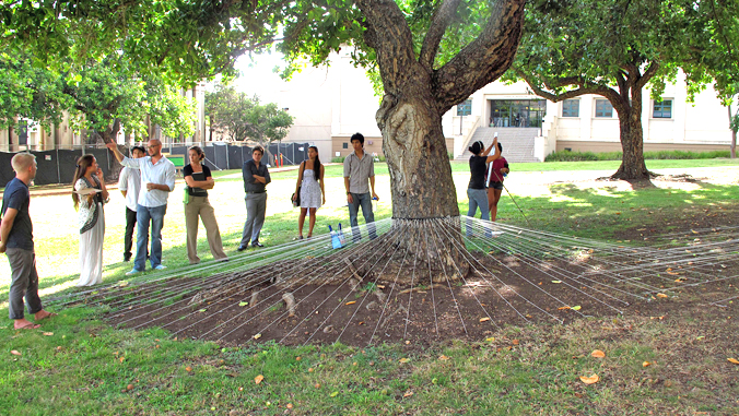 instructor and students gathered around a tree