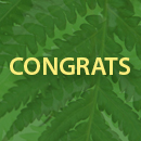 The word ʻcongratulationsʻ in front of green leaves