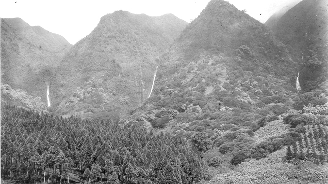 1930 photo of Manoa Valley