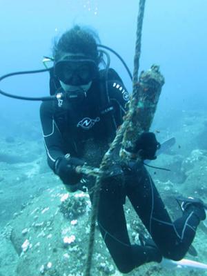 Delevaux diving
