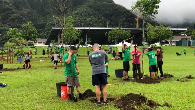 volunteers planting native trees