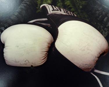 Stolen boxing gloves