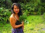 Momi Subiono with a handful of māmaki leaves. Courtesy photo.