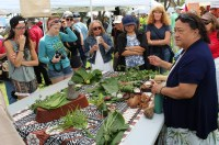 The medicinal use of Hawaiian plants is explained by Ka'ohu Monfort at the 2016 Cultural Festival. NPS Photo/Sami Steinkamp.