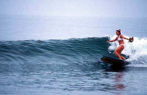 Maui Wedding Package  Maui Surfing Wedding  Surf Weddings