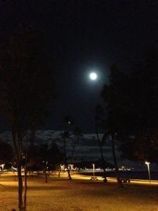 あと一日で満月です。