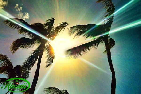sun_protection_in_hawaii