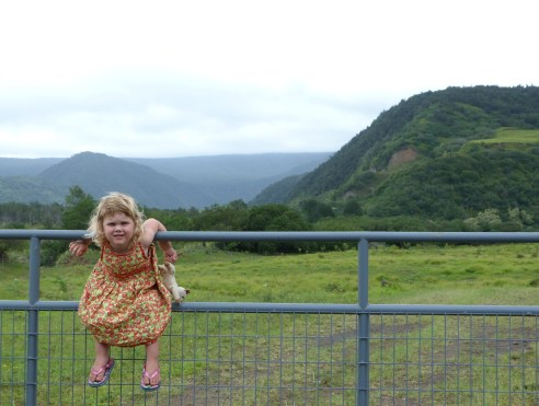 Big Island Organic Farms - little girl on a gate