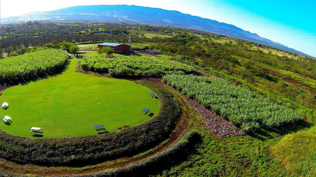 organic farms maui, hawaii organic farms, organic farms hawaii